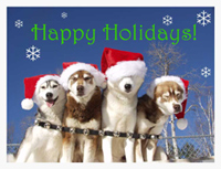 Happy Holidays from Husky Works Kennel! Looking for a gift?